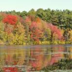 Fawn Lake Fall Foliage